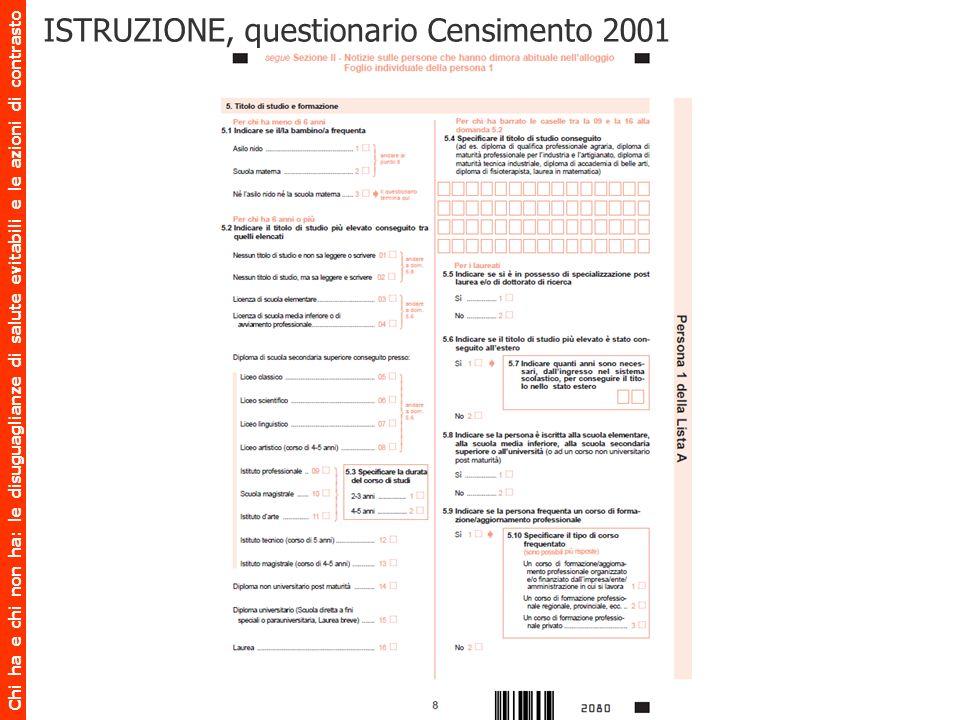 ISTRUZIONE, questionario Censimento 2001