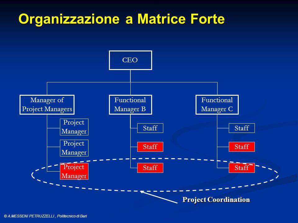 Organizzazione a Matrice Forte
