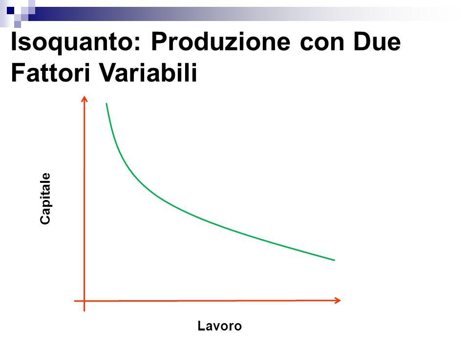 Isoquanto: Produzione con Due Fattori Variabili