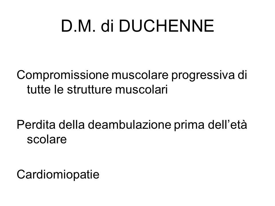D.M. di DUCHENNE Compromissione muscolare progressiva di tutte le strutture muscolari. Perdita della deambulazione prima dell'età scolare.
