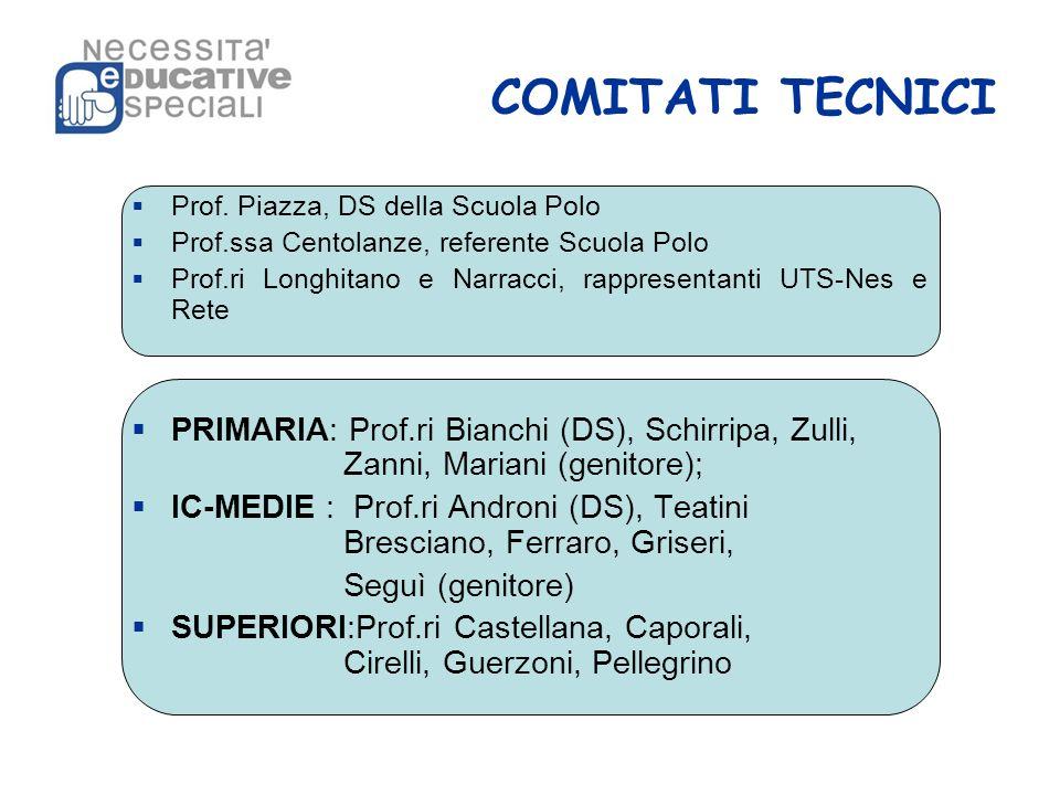 COMITATI TECNICI Prof. Piazza, DS della Scuola Polo. Prof.ssa Centolanze, referente Scuola Polo.