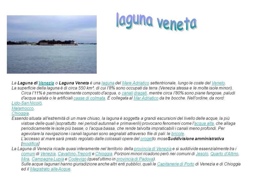 laguna veneta La Laguna di Venezia o Laguna Veneta è una laguna del Mare Adriatico settentrionale, lungo le coste del Veneto.