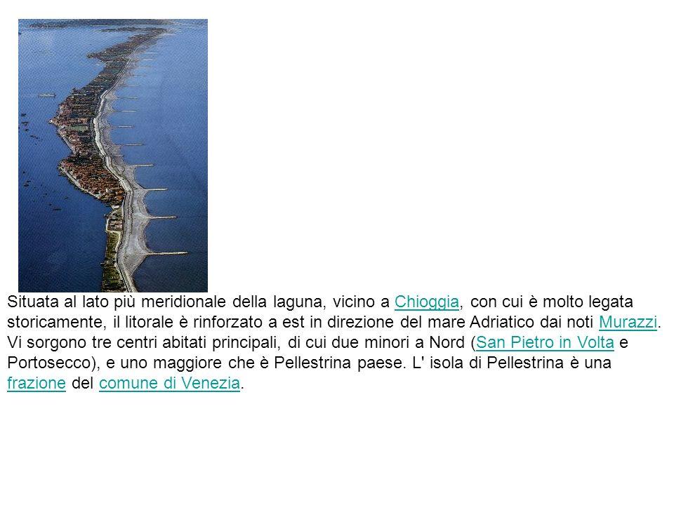Situata al lato più meridionale della laguna, vicino a Chioggia, con cui è molto legata storicamente, il litorale è rinforzato a est in direzione del mare Adriatico dai noti Murazzi.