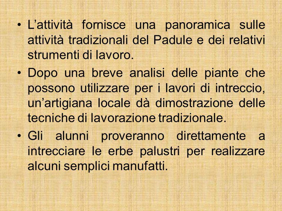L'attività fornisce una panoramica sulle attività tradizionali del Padule e dei relativi strumenti di lavoro.