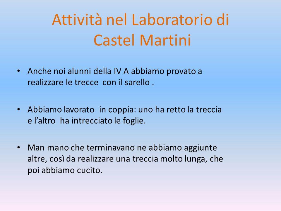 Attività nel Laboratorio di Castel Martini