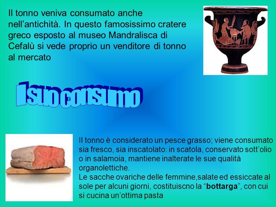 Il tonno veniva consumato anche nell'antichità
