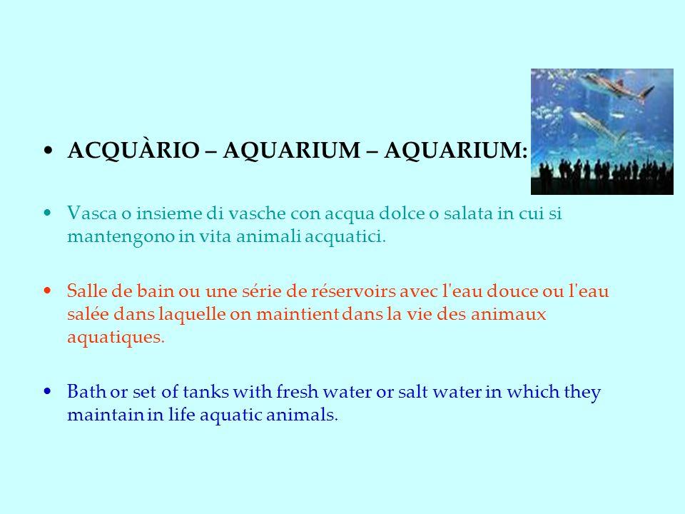 ACQUÀRIO – AQUARIUM – AQUARIUM: