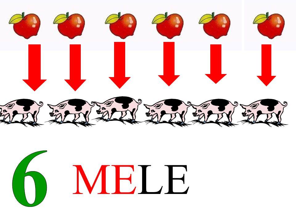 6 MELE