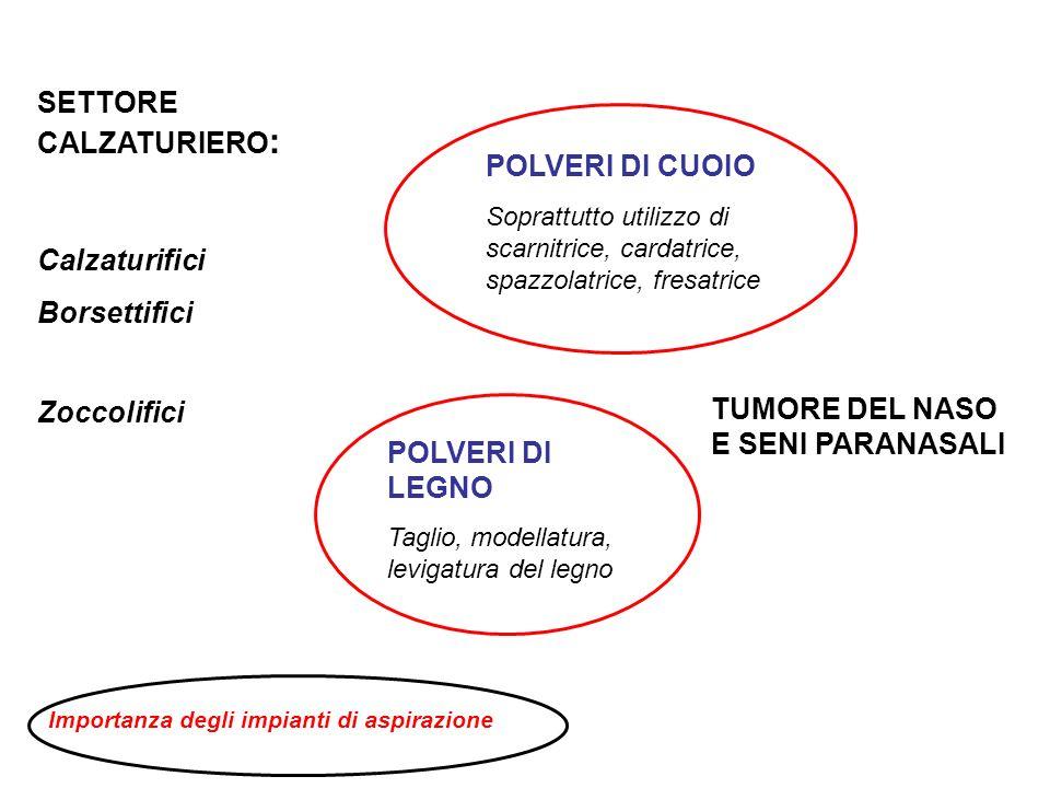SETTORE CALZATURIERO: