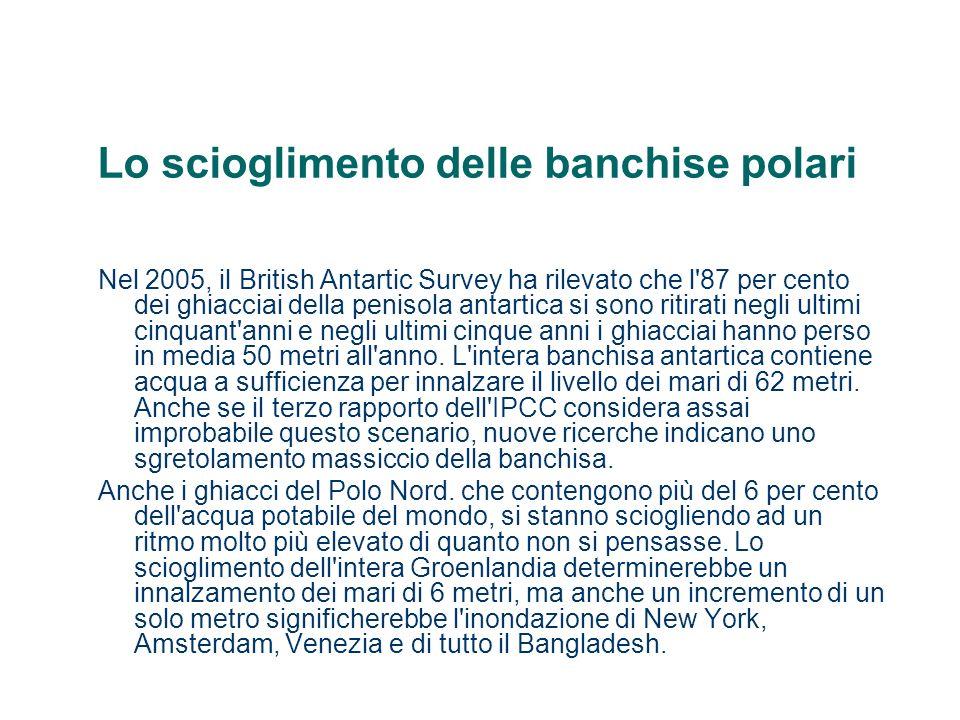 Lo scioglimento delle banchise polari