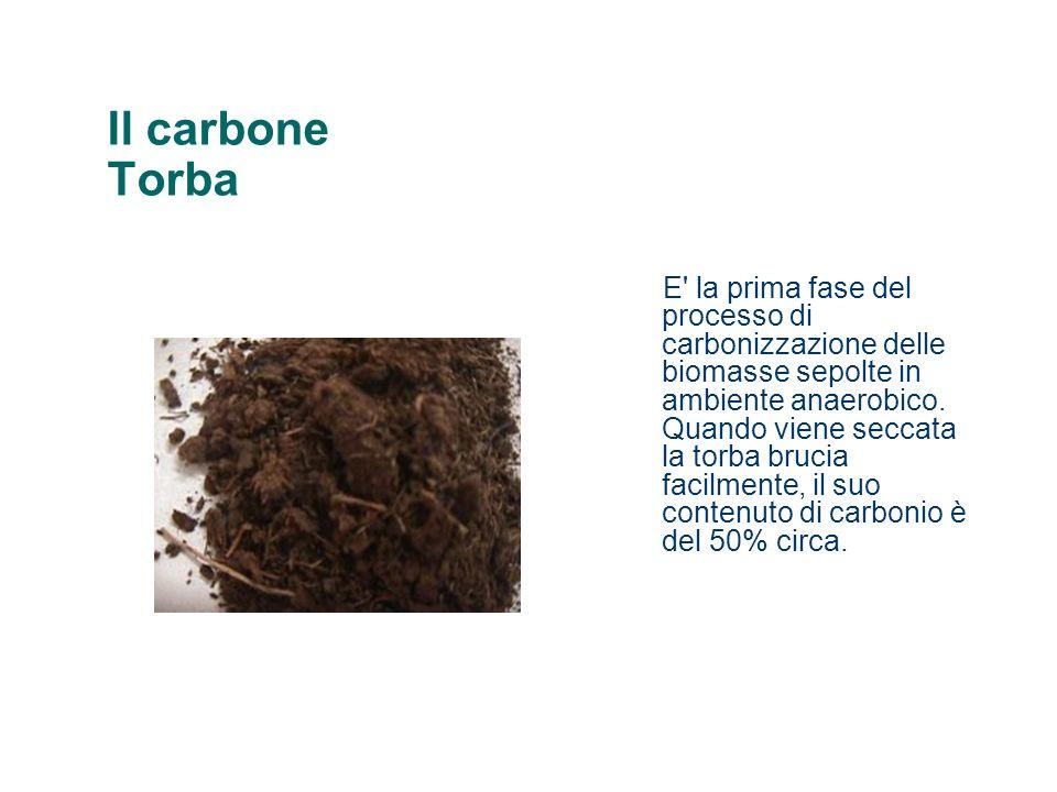 Il carbone Torba