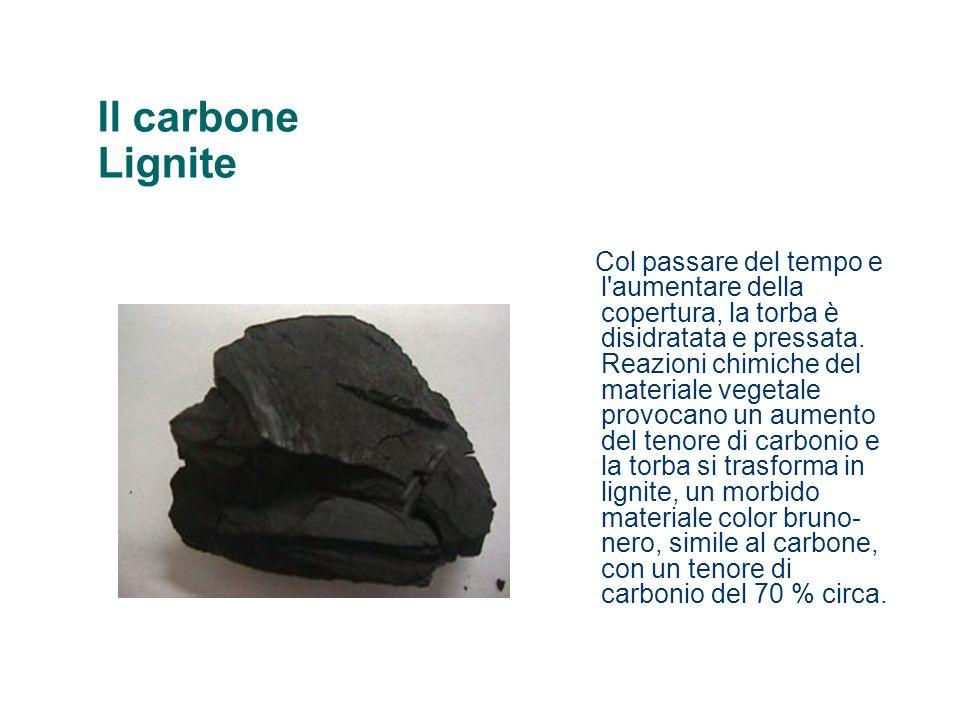 Il carbone Lignite