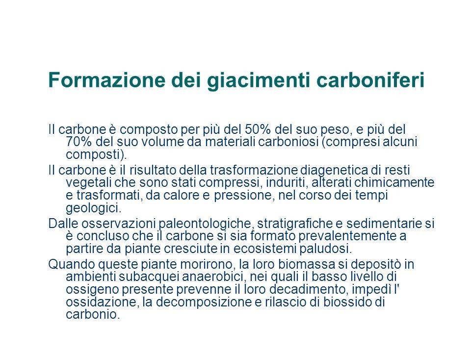 Formazione dei giacimenti carboniferi