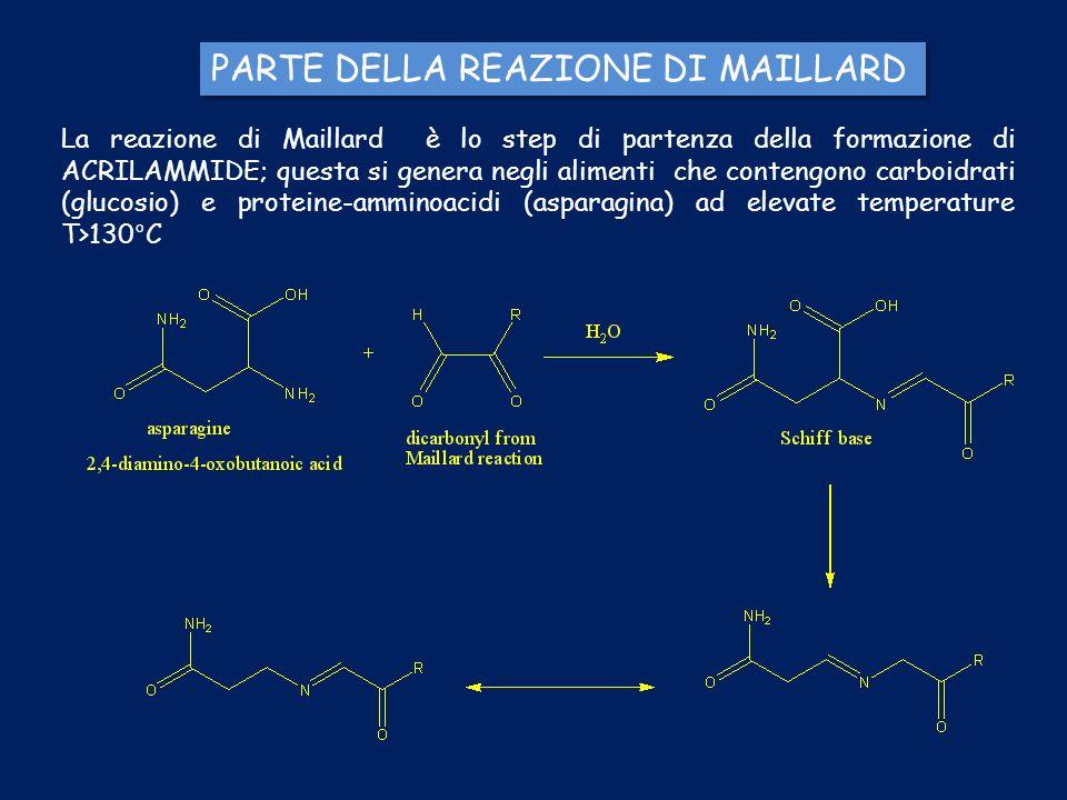 PARTE DELLA REAZIONE DI MAILLARD
