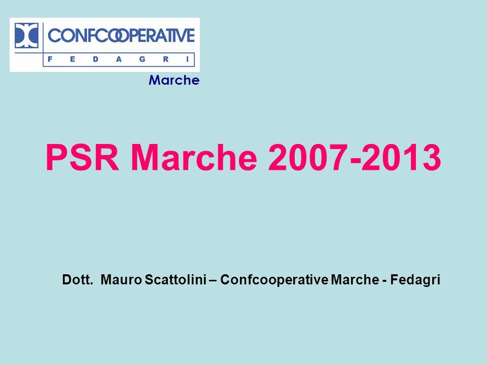 Dott. Mauro Scattolini – Confcooperative Marche - Fedagri