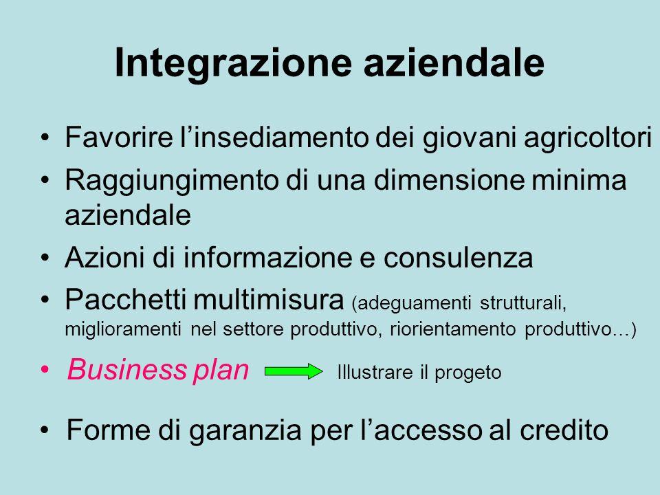 Integrazione aziendale