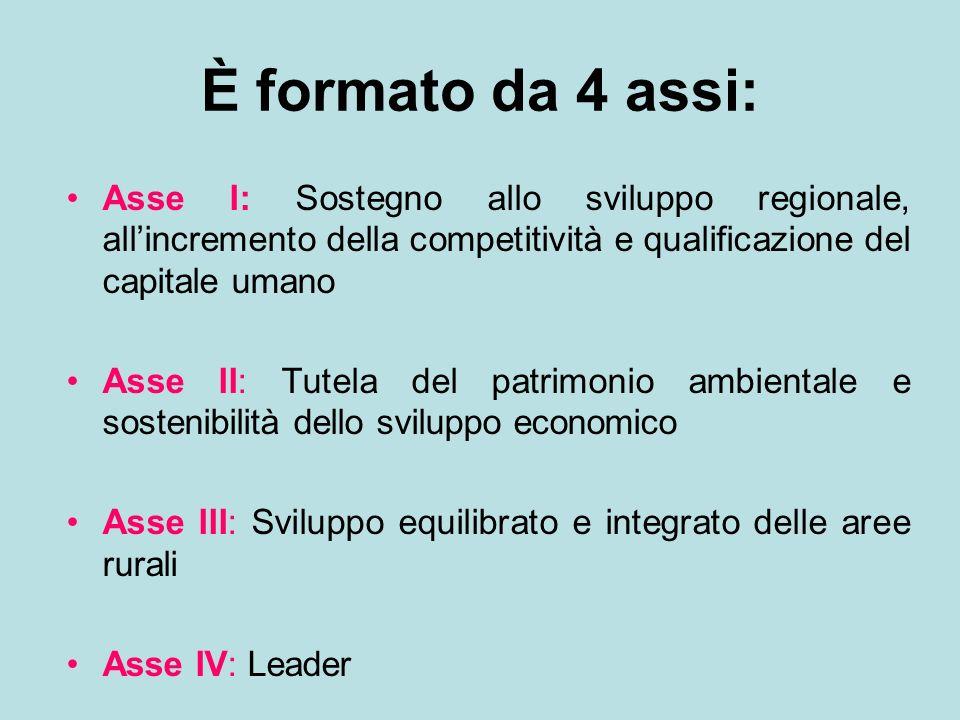 È formato da 4 assi:Asse I: Sostegno allo sviluppo regionale, all'incremento della competitività e qualificazione del capitale umano.