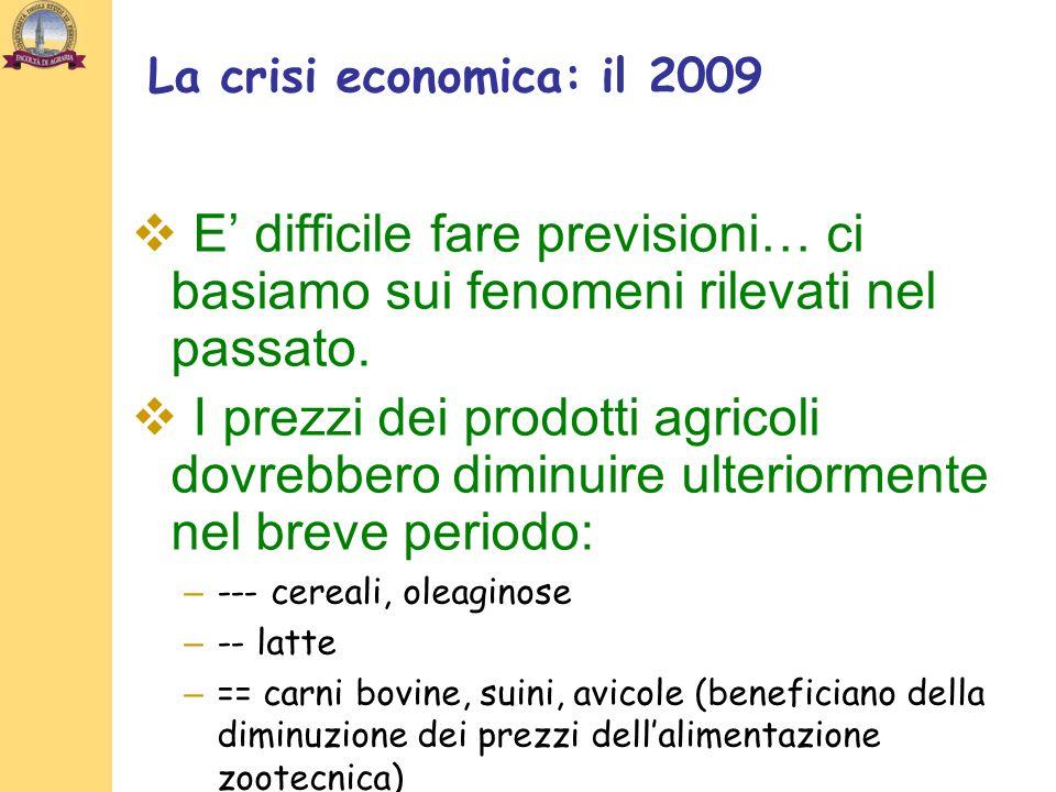 La crisi economica: il 2009 E' difficile fare previsioni… ci basiamo sui fenomeni rilevati nel passato.