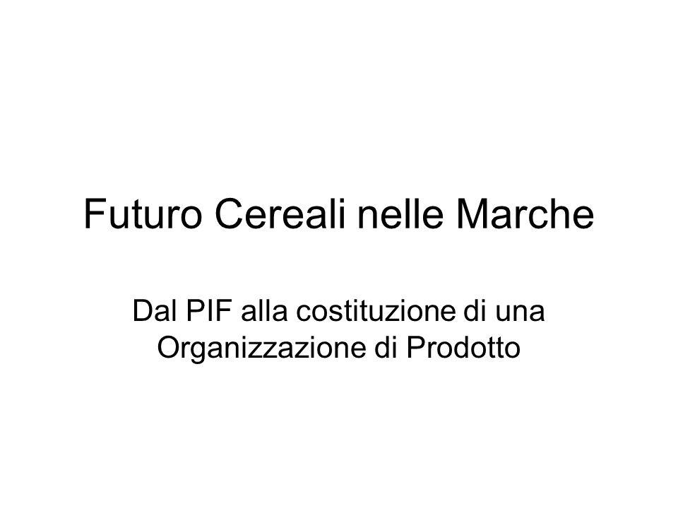 Futuro Cereali nelle Marche