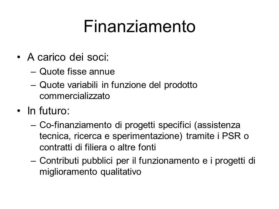 Finanziamento A carico dei soci: In futuro: Quote fisse annue