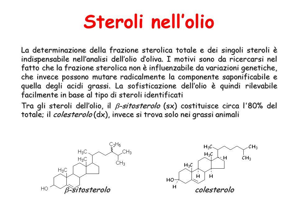 -sitosterolo colesterolo