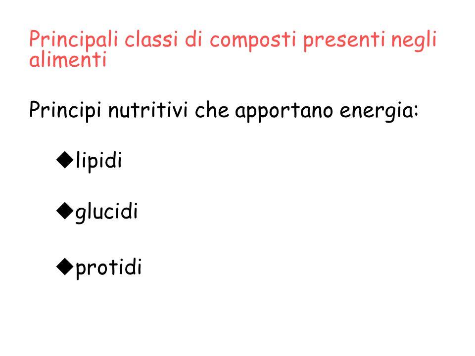 Principali classi di composti presenti negli alimenti