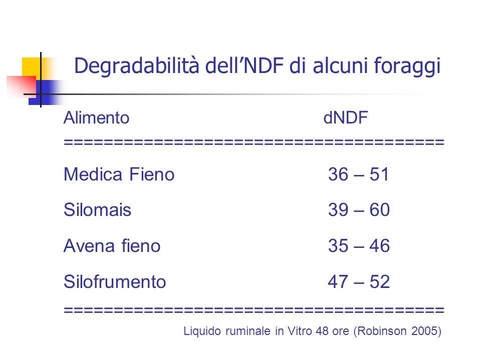 Degradabilità dell'NDF di alcuni foraggi