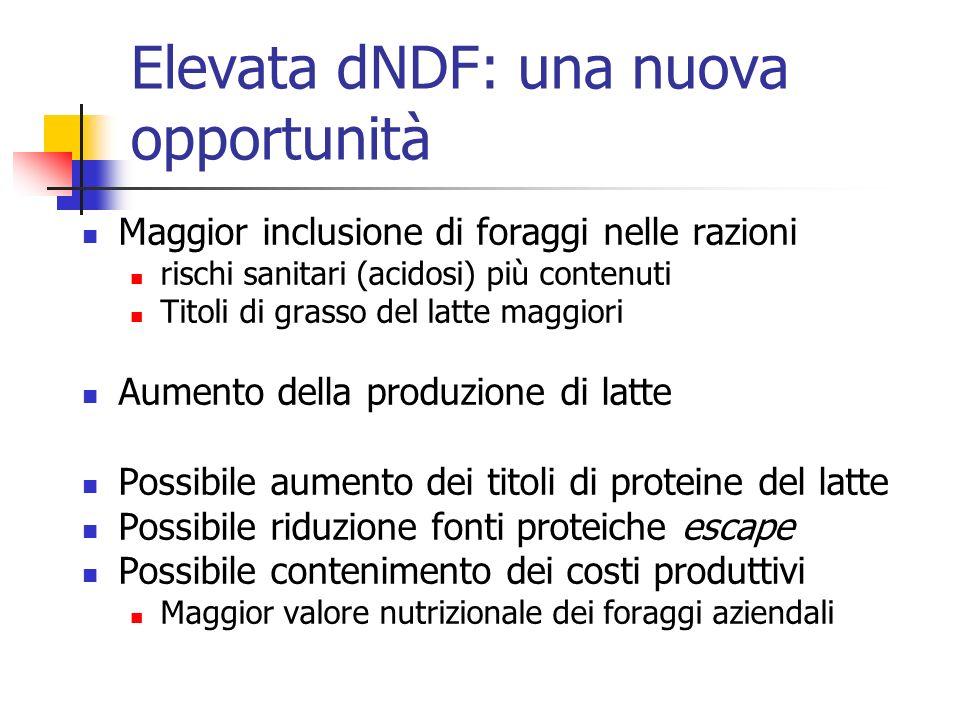 Elevata dNDF: una nuova opportunità