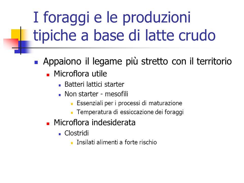 I foraggi e le produzioni tipiche a base di latte crudo
