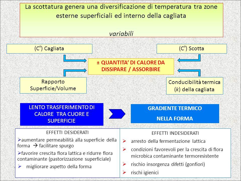 ± QUANTITA' DI CALORE DA DISSIPARE / ASSORBIRE