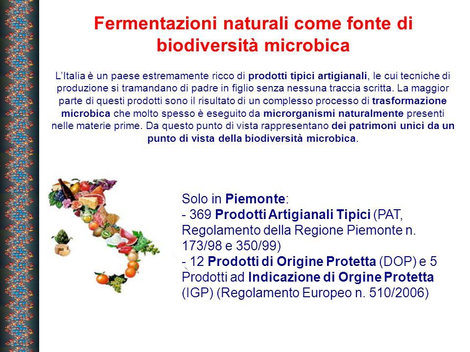 Fermentazioni naturali come fonte di biodiversità microbica