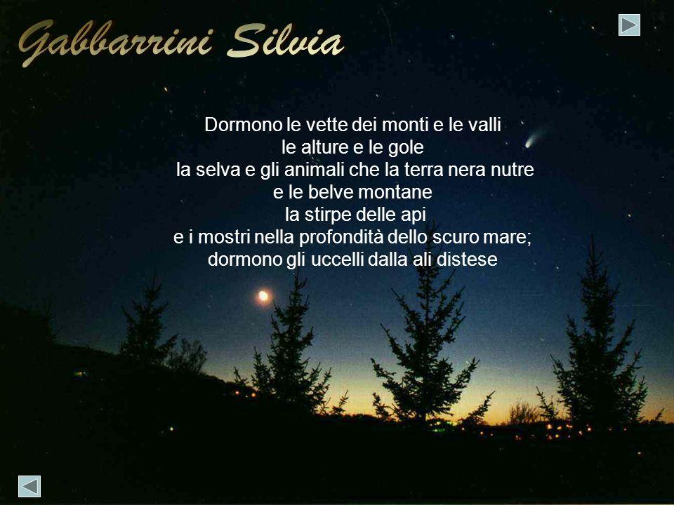 Gabbarrini Silvia Dormono le vette dei monti e le valli