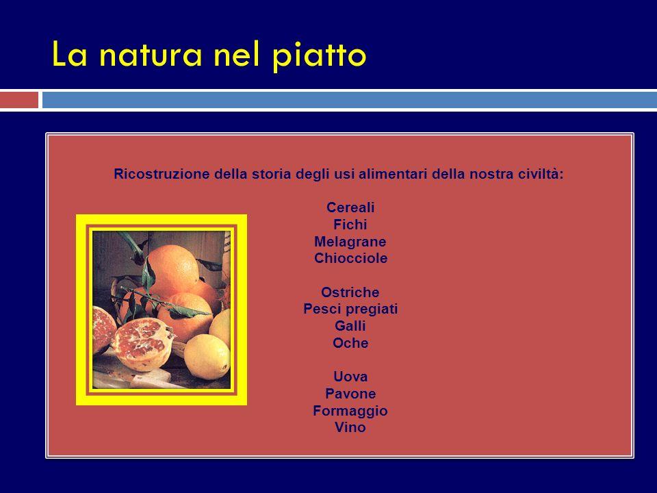 Ricostruzione della storia degli usi alimentari della nostra civiltà: