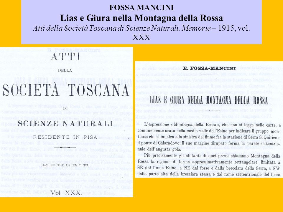 FOSSA MANCINI Lias e Giura nella Montagna della Rossa Atti della Società Toscana di Scienze Naturali.