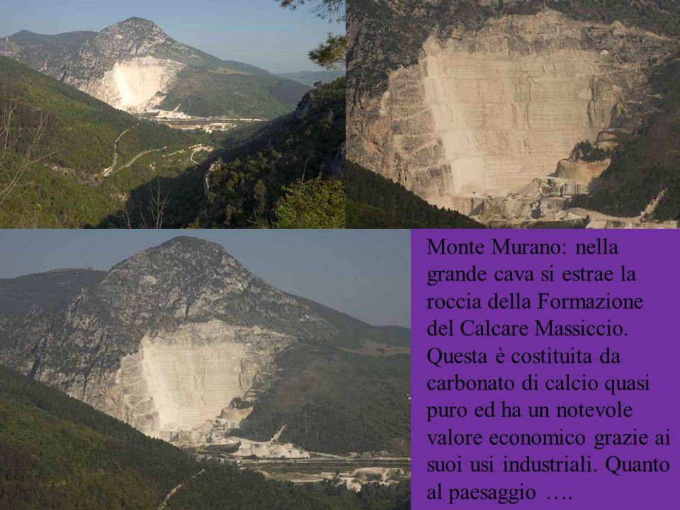 Monte Murano: nella grande cava si estrae la