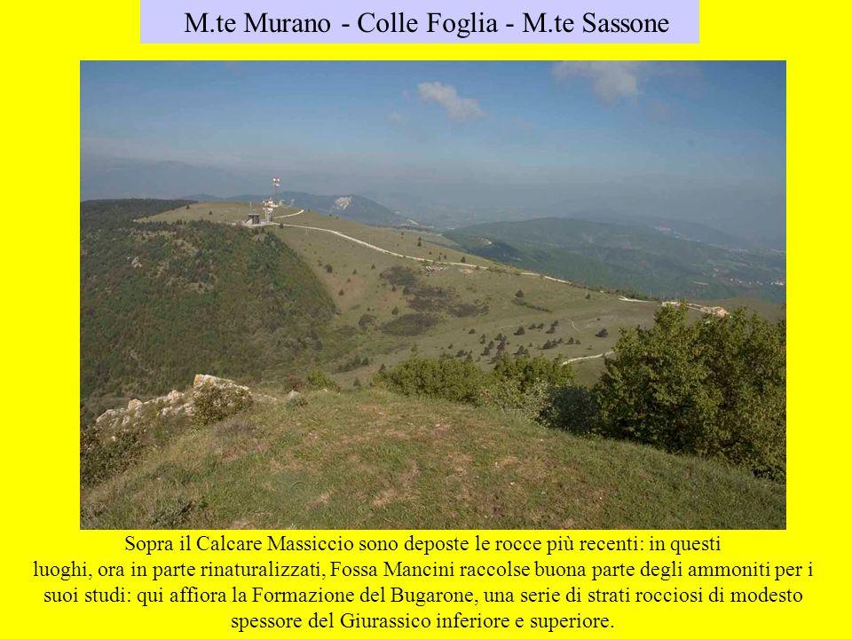 M.te Murano - Colle Foglia - M.te Sassone