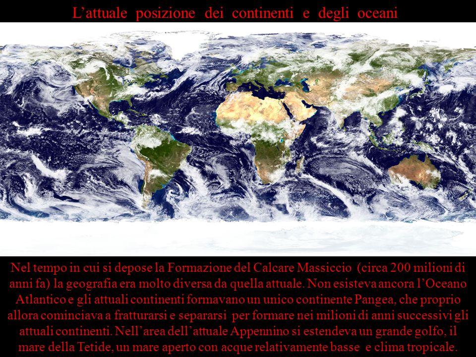 L'attuale posizione dei continenti e degli oceani