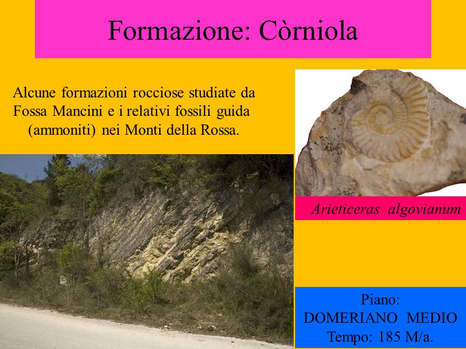 Formazione: Còrniola Alcune formazioni rocciose studiate da