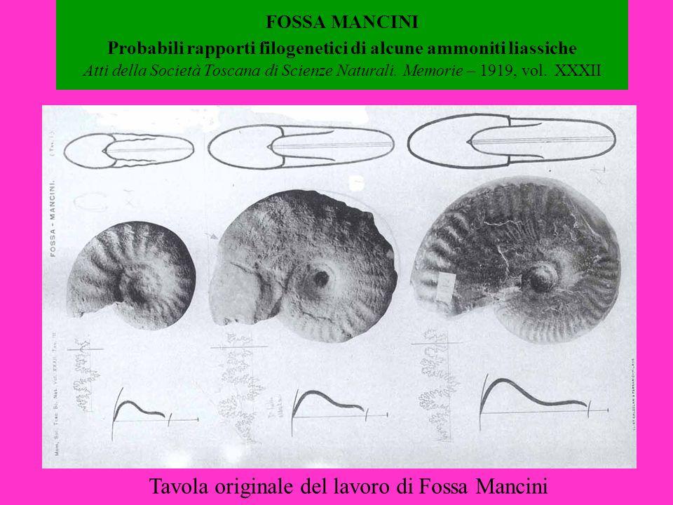 Tavola originale del lavoro di Fossa Mancini