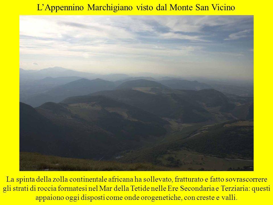 L'Appennino Marchigiano visto dal Monte San Vicino