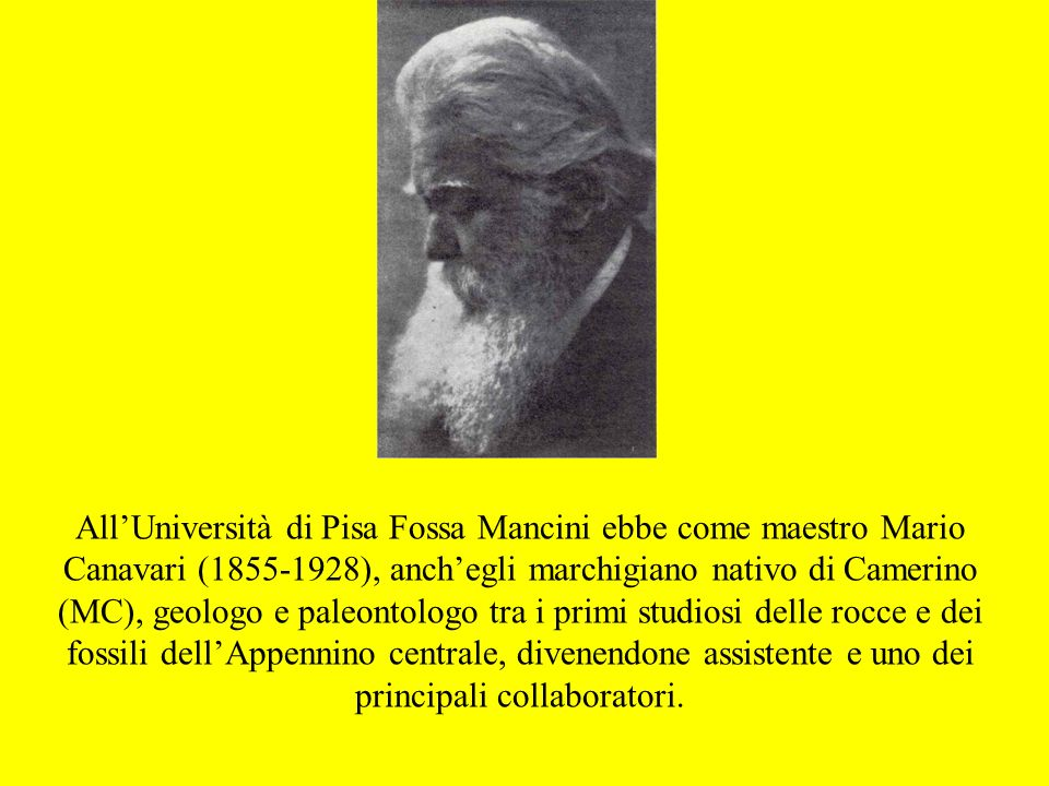 All'Università di Pisa Fossa Mancini ebbe come maestro Mario