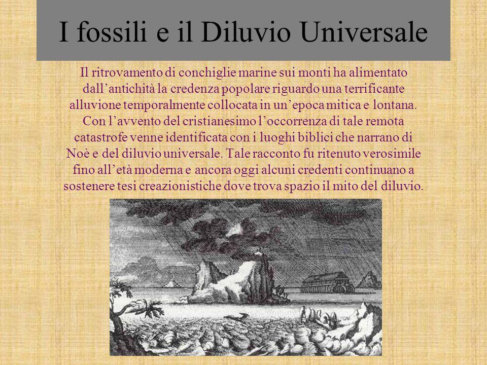 I fossili e il Diluvio Universale