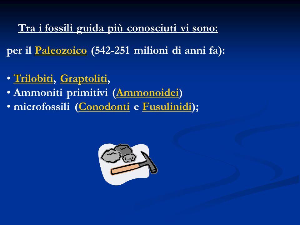 Tra i fossili guida più conosciuti vi sono: