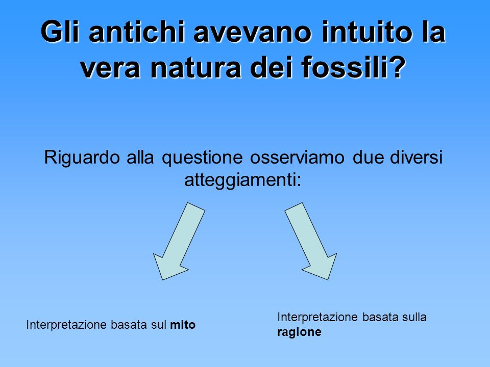 Gli antichi avevano intuito la vera natura dei fossili
