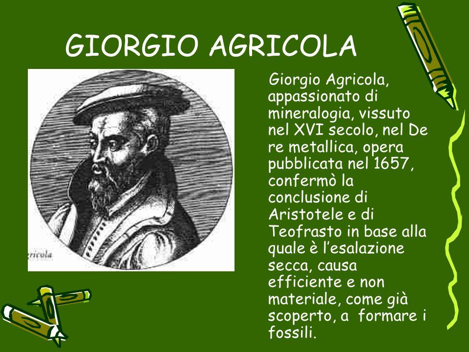 GIORGIO AGRICOLA