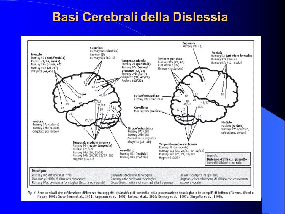 Basi Cerebrali della Dislessia
