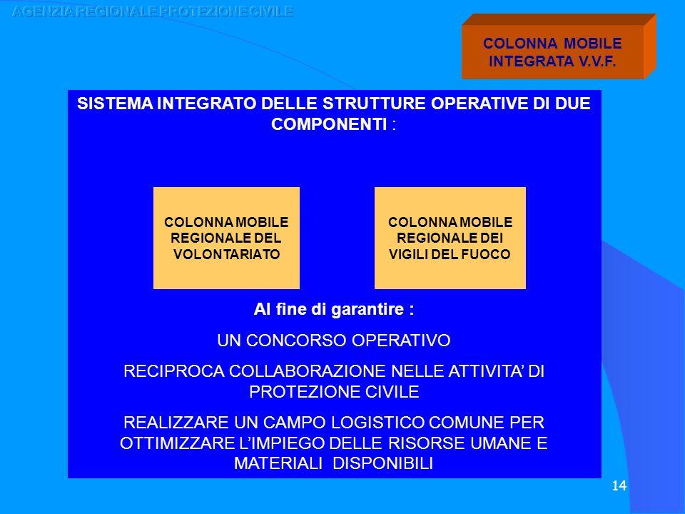 SISTEMA INTEGRATO DELLE STRUTTURE OPERATIVE DI DUE COMPONENTI :