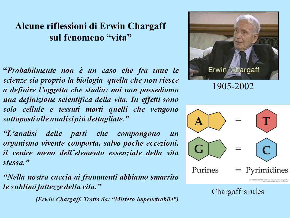 Alcune riflessioni di Erwin Chargaff sul fenomeno vita