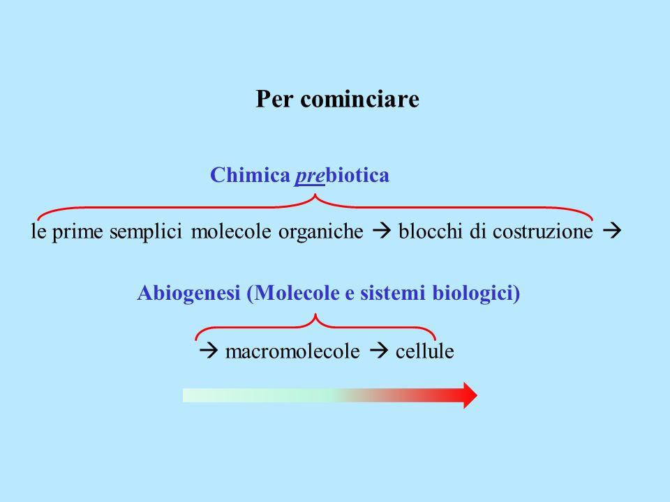 Abiogenesi (Molecole e sistemi biologici)