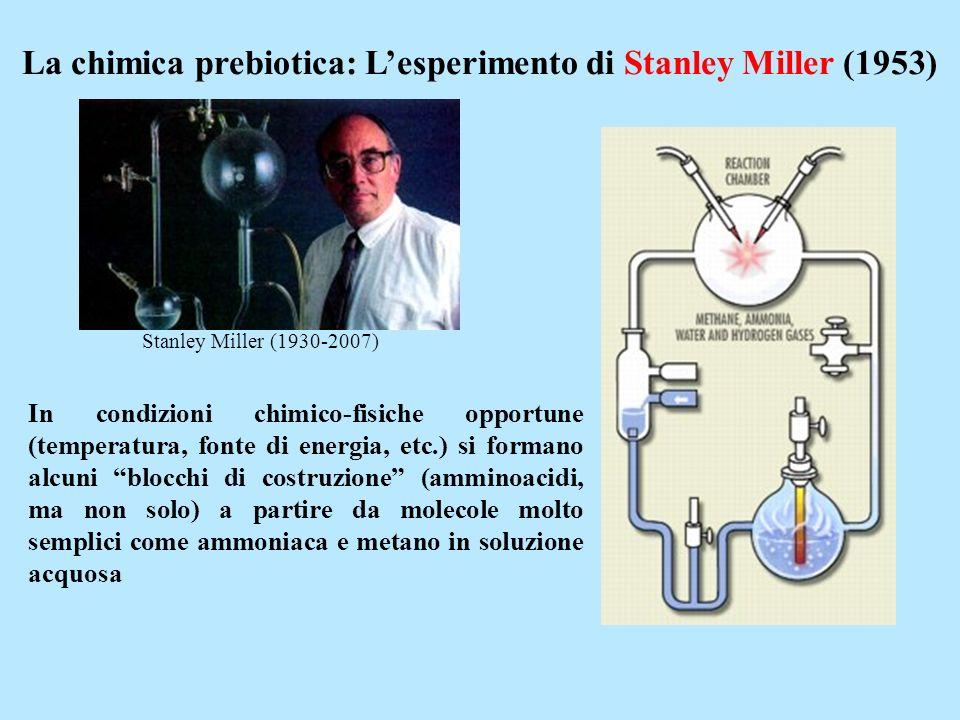 La chimica prebiotica: L'esperimento di Stanley Miller (1953)